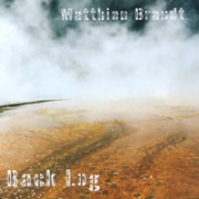 Matthieu Brandt – Back log